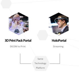 3d print portal and holography.png