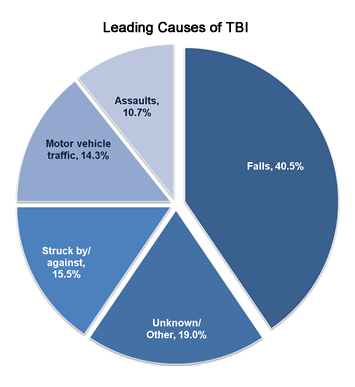 leading causes of TBI.png
