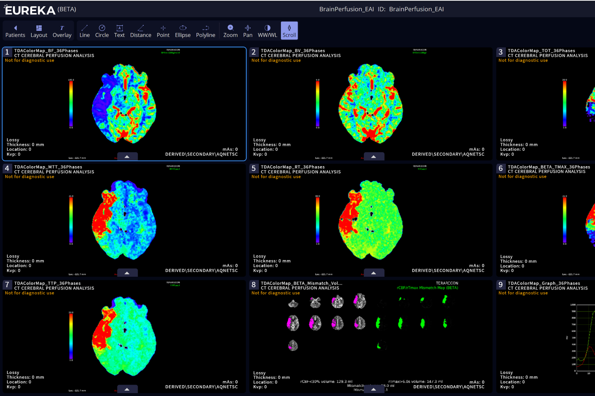 Neuro Assess CSW Web Images for Slider (2)