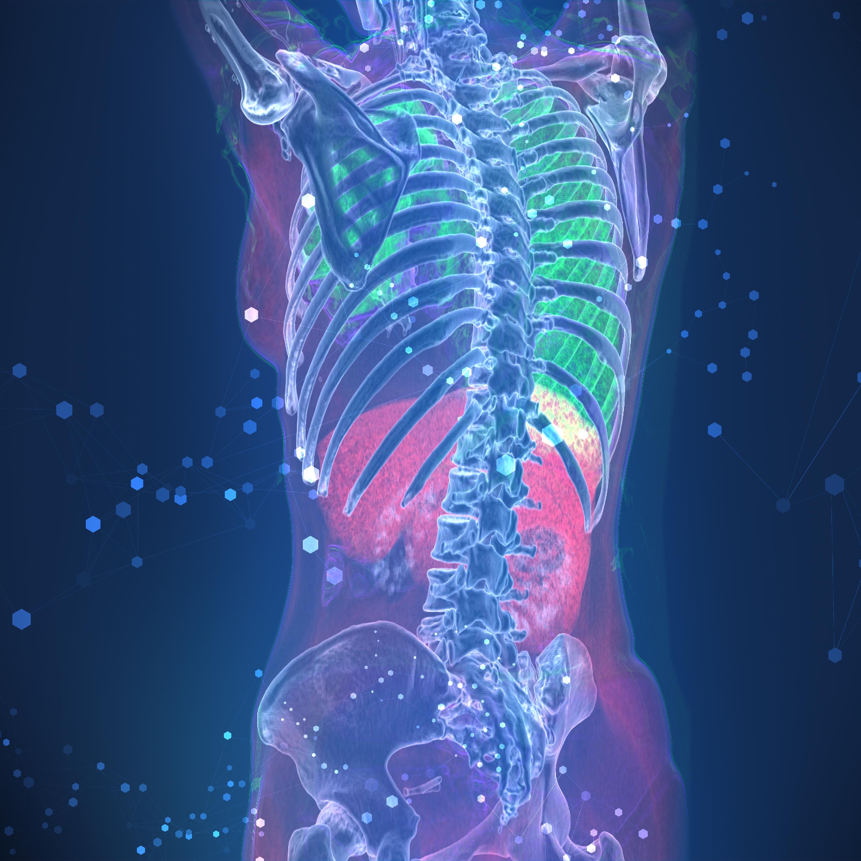 Spine-2-1