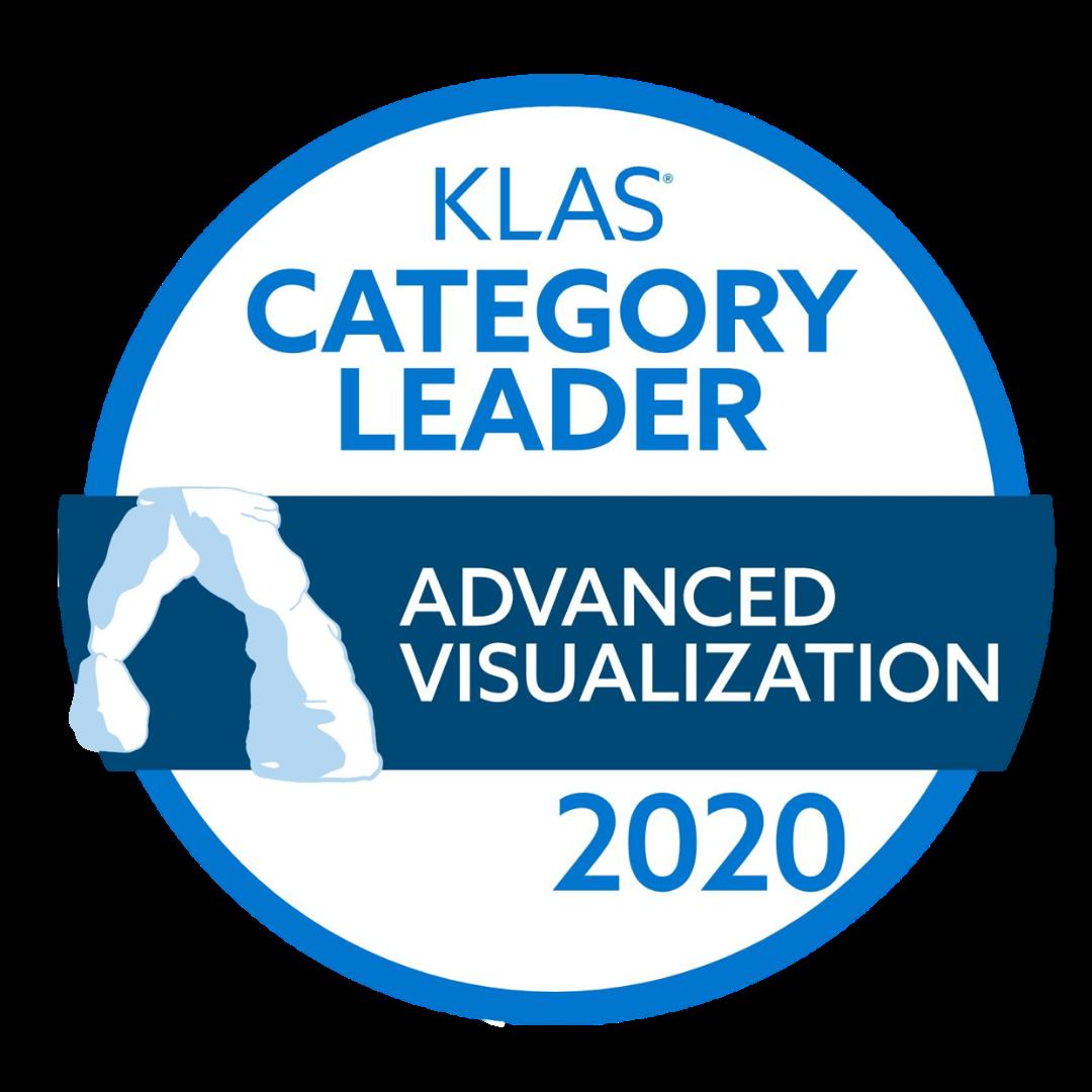klas advanced visualization leader 2020 terarecon